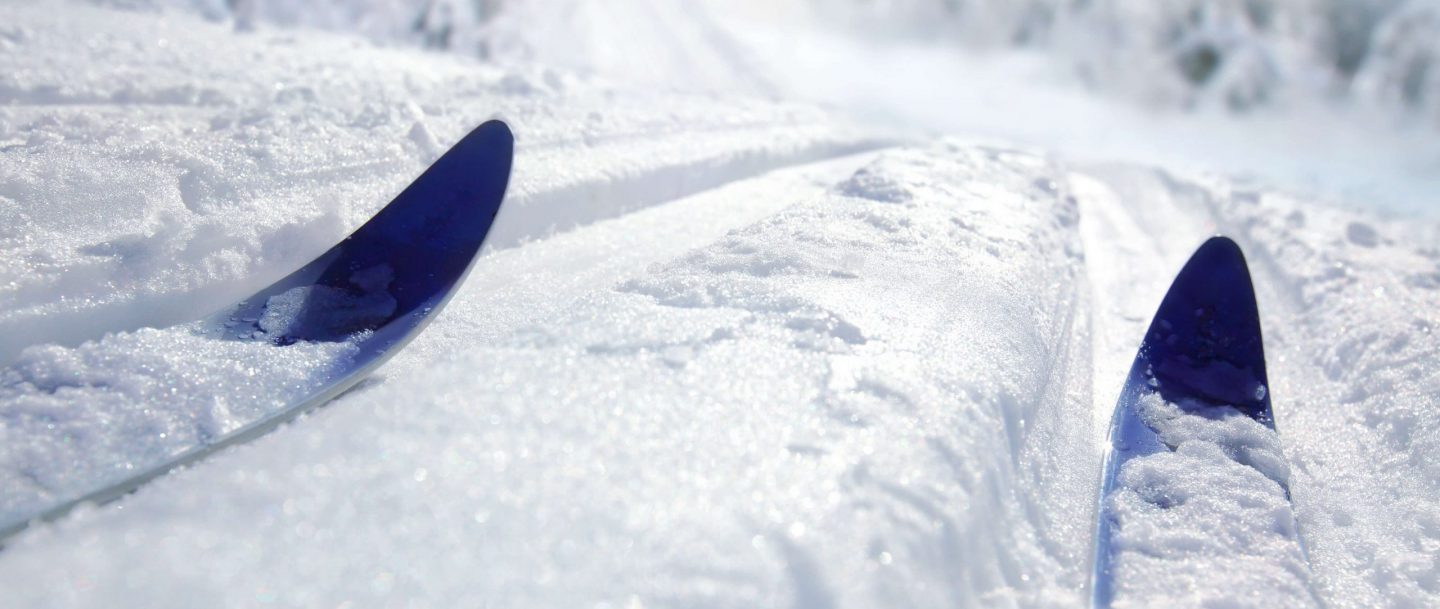 2 blue cross country skis in the snow