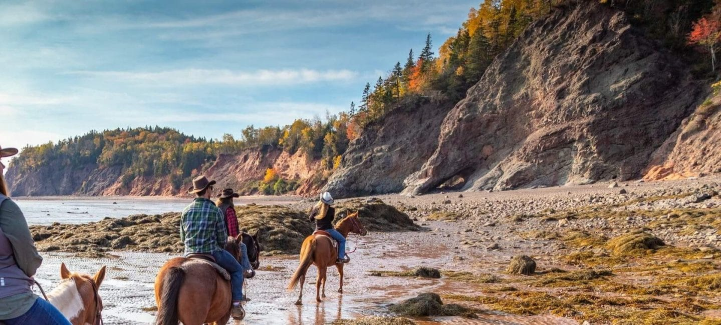 group of people on horseback ride on the beach near cliffs