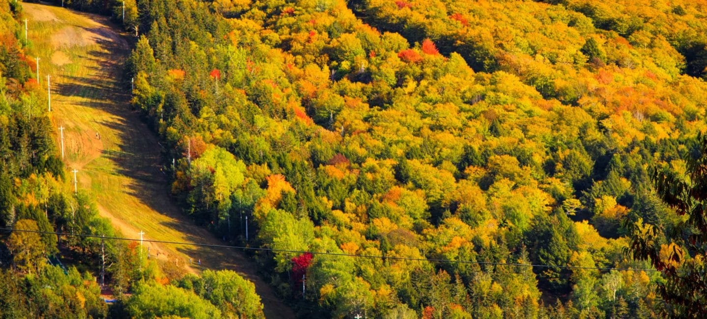aerial view of Wentworth ski hill in the fall