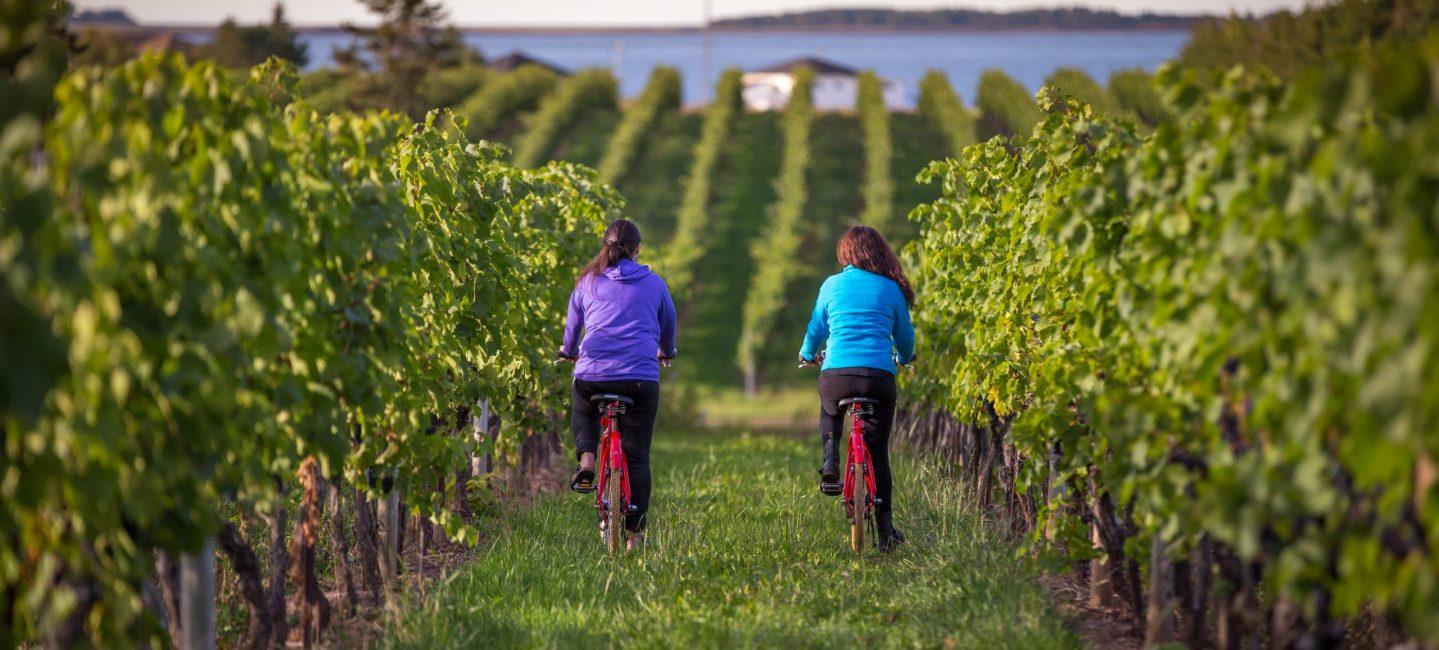 Jost-Biking-Winery